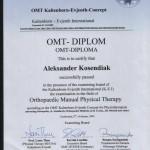 kosendiak-OMT-dyplom